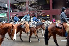 Cowboys in the 110th Denver National Western Stock Show Parade!
