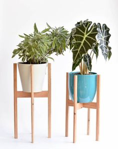 West Elm Inspired Diy Plant Stands Diy Plant Stand