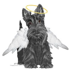 Little Scottie Angel