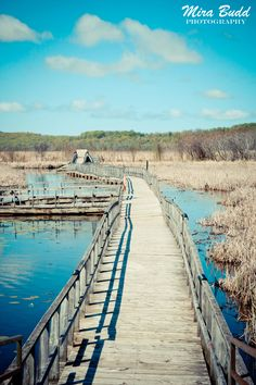 Midland Ontario Day Trip – Balm Beach, Wye Marsh and Sainte-Marie Among the Hurons Midland Ontario, Waterloo Ontario, Toronto Ontario Canada, Ontario Attractions, Ontario Travel, Canadian Travel, Visit Canada, Go Hiking, Weekend Trips