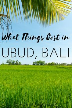 What Things Cost in Ubud. A complete guide to travel costs in Ubud to help you plan your Bali budget. Jam-packed with some great insider info and money-saving tips.