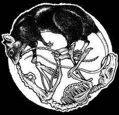 rat circle - life and death Rat Tattoo, Arte Punk, Mouse Tattoos, Arte Obscura, Desenho Tattoo, Arte Horror, Wow Art, Future Tattoos, Skull Art