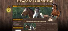 Création du site internet de l'élevage de la Magdeleine - vente de chevaux de sport, de poneys et pensions.