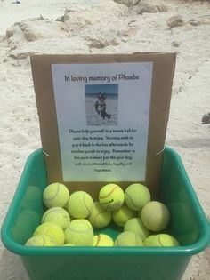 Loving tribute to dog erected at beach (PHOTO)