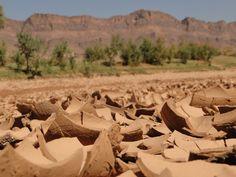 Die Wüste lebt, und wie. In Marokkos Süden Morocco, Adventure, Life