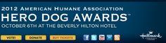 Hero Dog Awards :: Contestants
