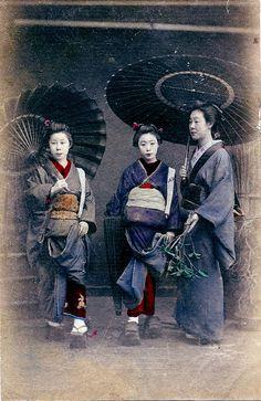 Hangyoku and Geisha | Tattoo Ideas & Inspiration - Japanese Art | Two Hangyoku (Young Geisha) and a Geisha with Bangasa (Paper umbrellas), Japan,1880s.