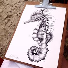 Seahorses prefer to swim in pairs with their tails linked together (Photo credit Isabella Mattiolo Marchese) Pen Art, Pencil Drawings, Zentangle, Deviantart, Artist, Seahorses, Photo Credit, Swim, Pairs