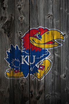 KU Jayhawk-need to do this to my fence!!!