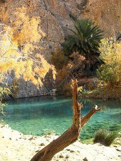 Clear fresh water in Chebika Oasis, western Tunisia (by dschubba).