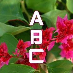 Writer's Sanctuary: ABC Challenge E: April 5, 2015 Emma Dangerous - Ex...