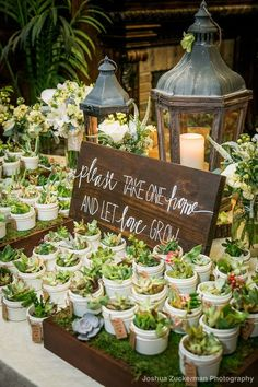 """succulent favor sign """"please take one home and let love grow"""" written by Kyle Michelle Weddings"""