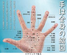 Pin by ピヨ on ヘルス Cat Exercise, Psychic Powers, Palmistry, Auras, Reiki, Horoscope, Chakra, Health Care, Health Fitness
