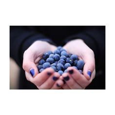 blueberries | Tumblr ❤ liked on Polyvore featuring pictures, blue, photos, food, blue pictures and backgrounds