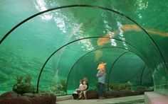 Rotterdam Zoo Blijdorp - Rotterdam - Holland.com