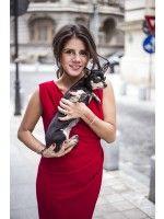 BEAUTIFUL WRAP DRESS - Rhea Costa-Shop Little Red Dress, Costa, Wrap Dress, Shopping, Beautiful, Dresses, Style, Fashion, Vestidos