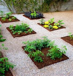It's always nice to have some fresh herbs in your yard so you can pick, use, or just smell them whenever you want to. However, it's sometimes often difficult to find out where to plant them or how to incorporate them into the rest of your garden and yard decorations. No... #diy #herbgarden #herbs