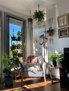 Meine Lieblingspflanzenecke hier in Austin, TX: Zimmerpflanzen Room Ideas Bedroom, Decor Room, Bedroom Decor, Home Decor, Bedroom Plants, My New Room, My Room, Aesthetic Room Decor, Aesthetic Plants