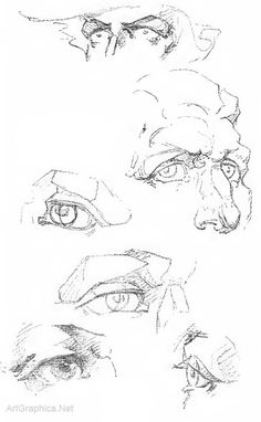 eyes and anatomy, drawing eyes, eye anatomy for artists