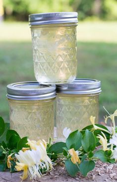 Items similar to Honeysuckle Jelly Homemade One Half Pint on Etsy - Gelee Ideen Canning Tips, Home Canning, Canning Recipes, Honeysuckle Jelly, Honeysuckle Cottage, Jelly Recipes, Jam Recipes, Dandelion Jelly, Canning Pickles