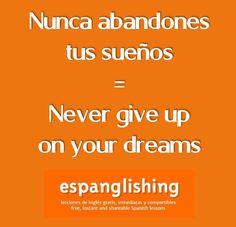 Nunca abandones tus sueños = Never give up on your dreams