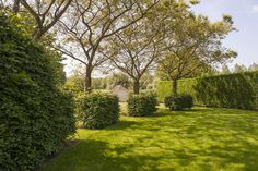 Outdoor Trees, Landscaping, Stage, Sidewalk, Country Roads, Side Walkway, Yard Landscaping, Walkway, Landscape Architecture