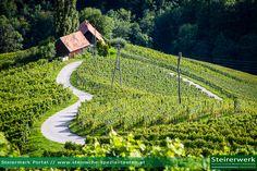 Die Herzerl Straße nahe dem Sulztal an der Weinstraße in der Steiermark Heart Of Europe, Homeland, Austria, Travelling, Vineyard, Wanderlust, Hotels, Van, Sweet