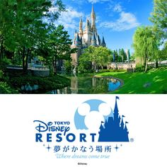 Enjoy Tokyo Disneyland and Tokyo DisneySea on consecutive days with these special-value Passports! /Tokyo Disney Resort Website