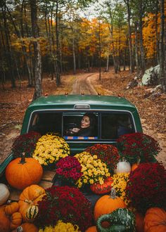Waiting for the Great Pumpkin to Arrive (Classy Girls Wear Pearls) Fall Flannel Fun. pumpkins and mums Share Pictures, Fall Pictures, Fall Images, October Pictures, Pumpkin Pictures, Fall Photos, Fall Inspiration, Autumn Cozy, Autumn Feeling