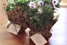 Affordable Hostess Gifts, Perfect for Spring, Flowers for Planting