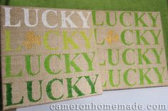 Homemade DIY Projects & Tips by Cameron: Lucky Day
