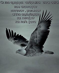 Ο έξυπνος πιάνει πουλιά στον αέρα... ο εξυπνάκιας χάνει πουλιά απ'το κλουβί!!! Qoutes, Life Quotes, Adorable Quotes, Greek Quotes, Life Lessons, Picture Video, Positive Quotes, Poems, Inspirational Quotes