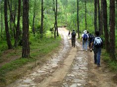 Hattiban - excellent resorts, and small hikes Excellence Resorts, Nepal, Hiking, Walks, Trekking, Hill Walking