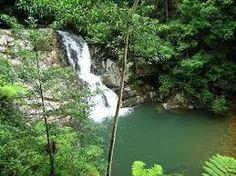 Currumbin Rock Pool, Queensland