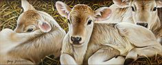 Brown Swiss Calves – Cow Art and More