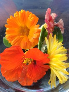 Native flowers.
