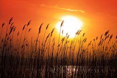 Sunset - Lake Ohrid