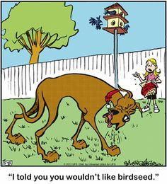 Today on Marmaduke - Comics by Brad Anderson Funny Animal Pictures, Funny Pics, Funny Animals, Laughter The Best Medicine, Uncle Scrooge, Pet Photos, Bow Wow, Gentle Giant, Calvin And Hobbes