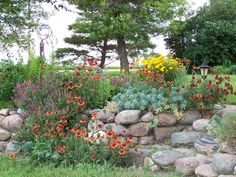 my rock wall flower garden.  I spent 3 summers laying all the rock and planting flowers