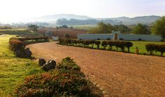 Hazendal Weingut, Kapstadt, Südafrika