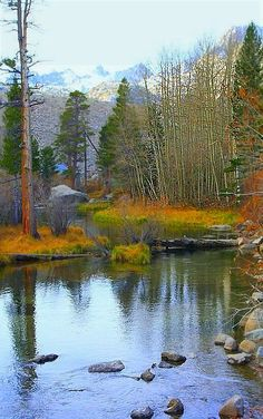 Some of the most beautiful scenery is on the Eastern slopes of the majestic Sierra Nevada Mountains. I took this early morning Fall scene along Bishop Creek, West of Bishop, California ~ LynnMy camera is a Canon EOS Rebel XT Beautiful World, Beautiful Places, Beautiful Pictures, Pictures To Paint, Nature Pictures, Tree Forest, Amazing Nature, Beautiful Landscapes, The Great Outdoors