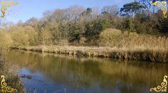 Devon, Photo Editor, Country Roads, River, Outdoor, Outdoors, Outdoor Games, Outdoor Living, Rivers