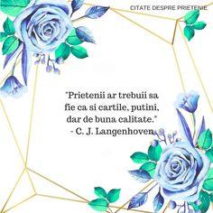 Ex Best Friend, Best Friends, Violet Plant, Charles Darwin, Scott Fitzgerald, The Godfather, Jane Austen, Bob Marley, Spiritual Quotes