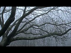 Arvo Pärt: Cantus In Memory of Benjamin Britten -- Anyway, this is the music that I like unconditionally... *) --