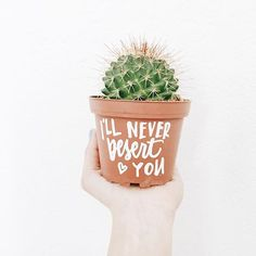 plant ideas and inspiration for every room in the house including living room, nursery, kids room, offices, kitchen and more! Room With Plants, Plants Are Friends, Cactus Y Suculentas, Little Plants, Outdoor Plants, Cacti And Succulents, Indoor Garden, Houseplants, Bonsai