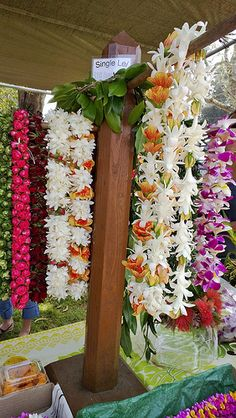 Farmers market leis plumeria and then some.