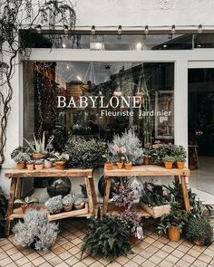 Country Shop, Backyard Kitchen, Charming House, Shops, Cafe Shop, Shop Fronts, Spring Is Here, Shop Interiors, Cafe Restaurant