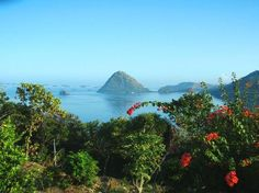 Flores Vacations: 39 Things to Do in Flores, Indonesia | TripAdvisor