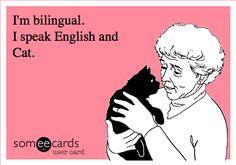 I speak English and Dog