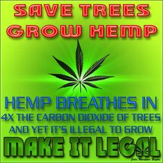 Save Trees , GO now , & see for yourself = http://0t.se/gogreenhemp